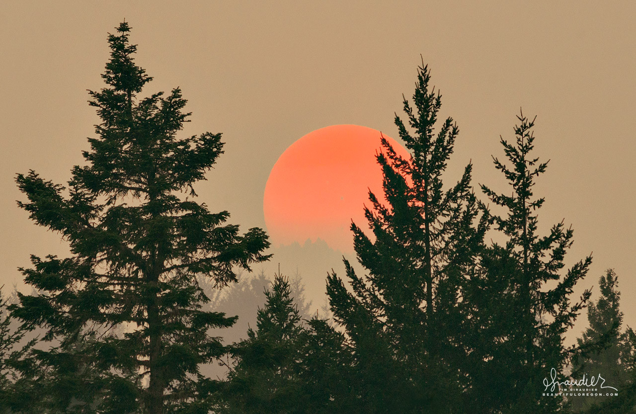 Oregon forest fires, sun obscured with smoke, allows one to safely see sunspots with the naked eye. Lane County, Willamette National Forest, Oregon West Cascades.