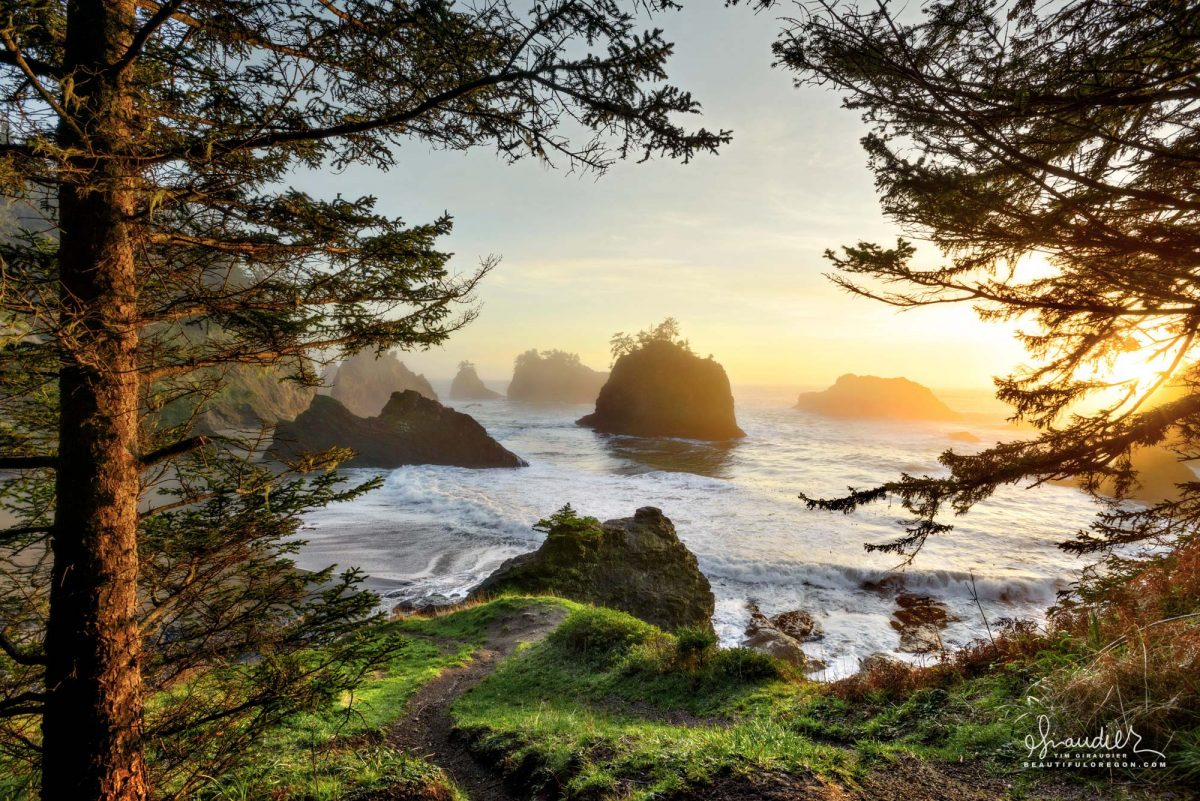 Boardman State Park south Oregon Coast sunset
