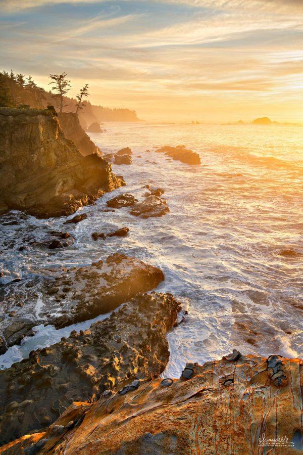Golden sunset on Shore Acres sandstone. Walking the shoreline footpath at Shore Acres State Park. Coos County, Central Oregon Coast landscape photography
