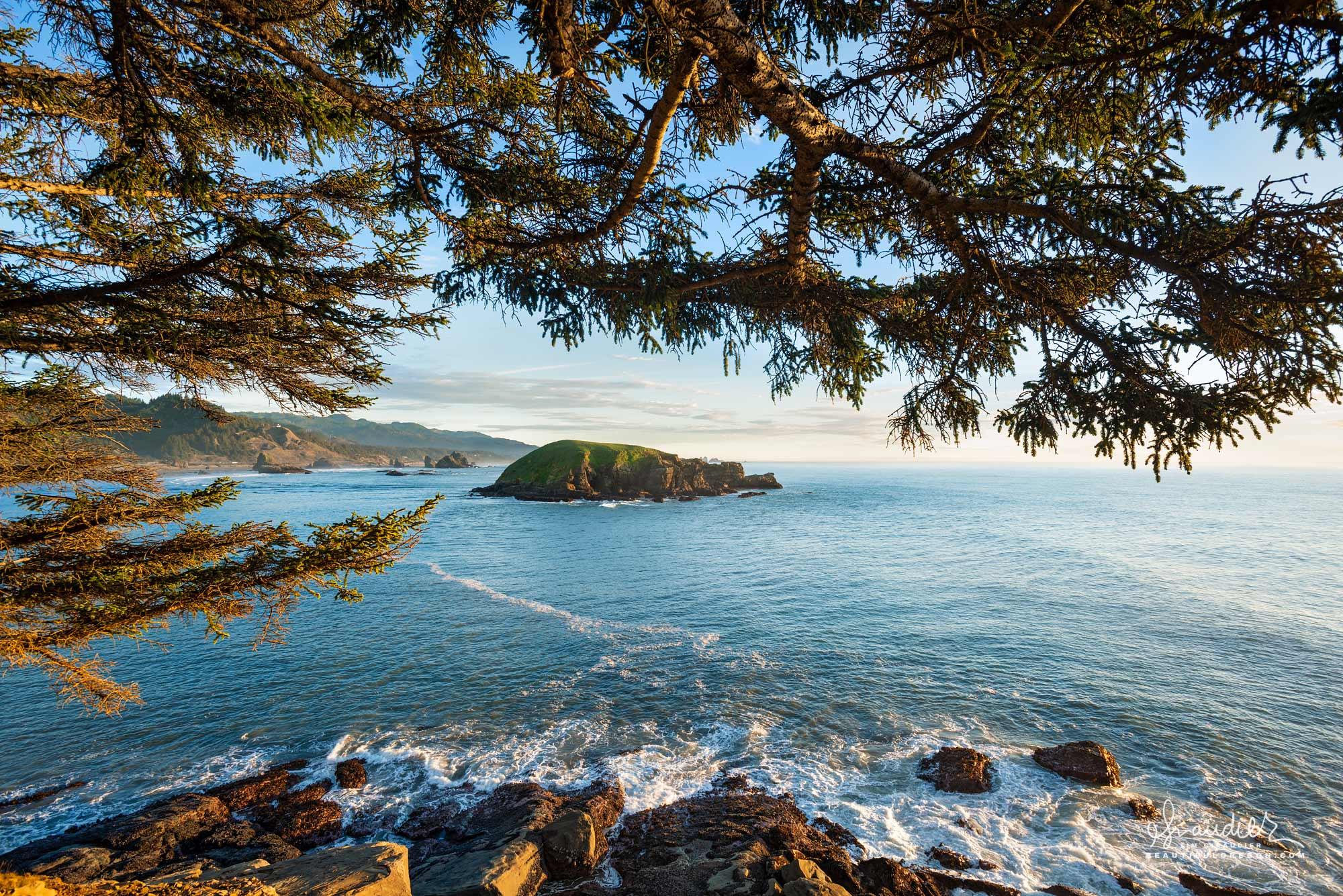 Hunter Island, Cape Sebastian State Scenic Corridor. Curry County, Oregon South Coast.