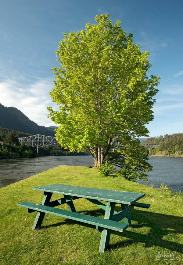 Picnic table at downstream end of Thunder Rock Island. Cascade Locks, Columbia River Gorge.