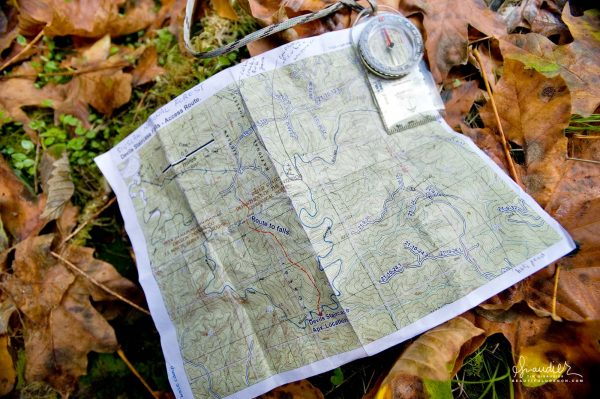 Route to Devil's Staircase Wilderness and Wasson Creek. Siuslaw National Forest, Oregon Coast Range. Douglas County Outdoors recreation.