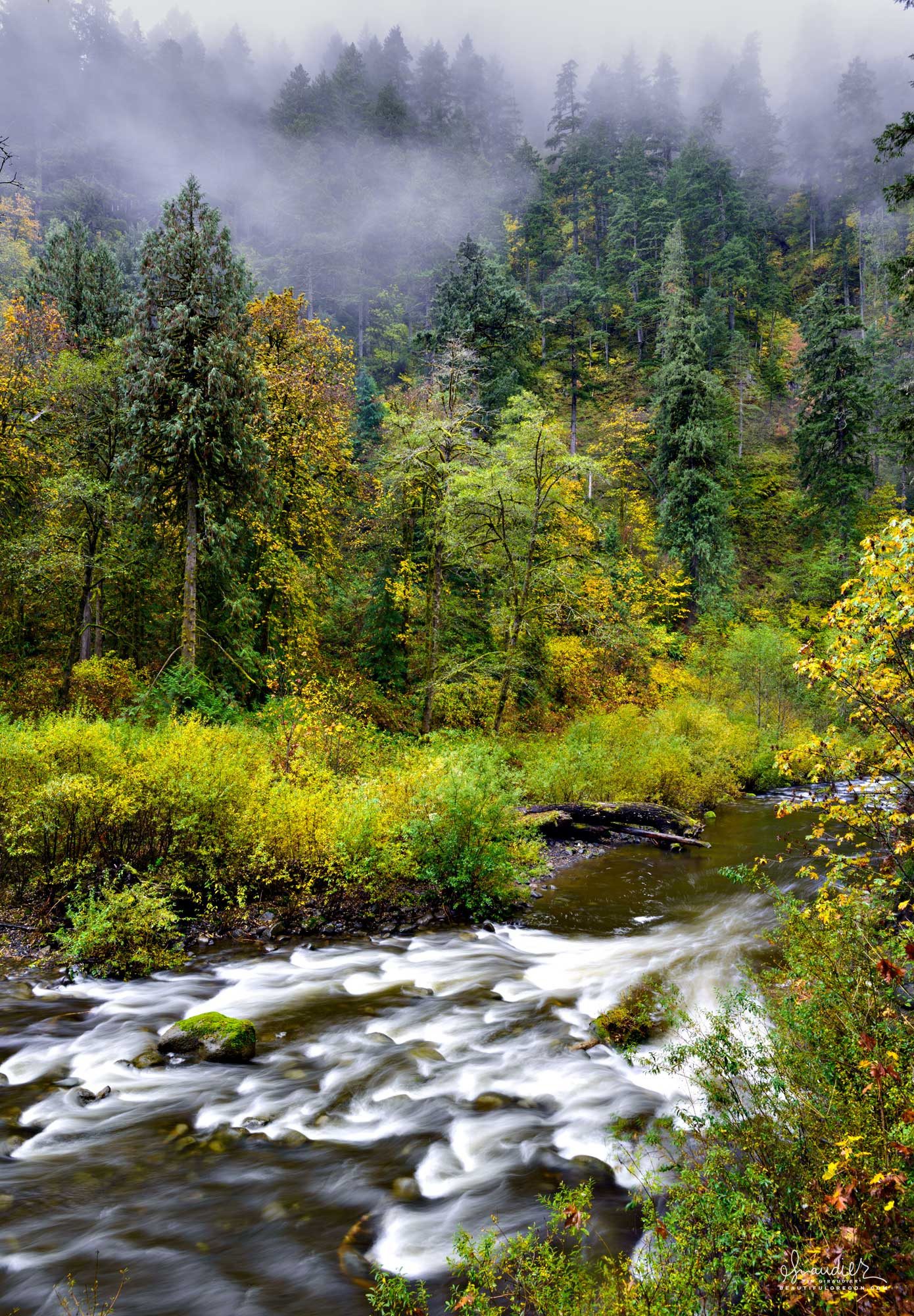 Eagle Creek flows through an autumn forest. Mount Hood National Forest, Columbia River Gorge, Oregon.