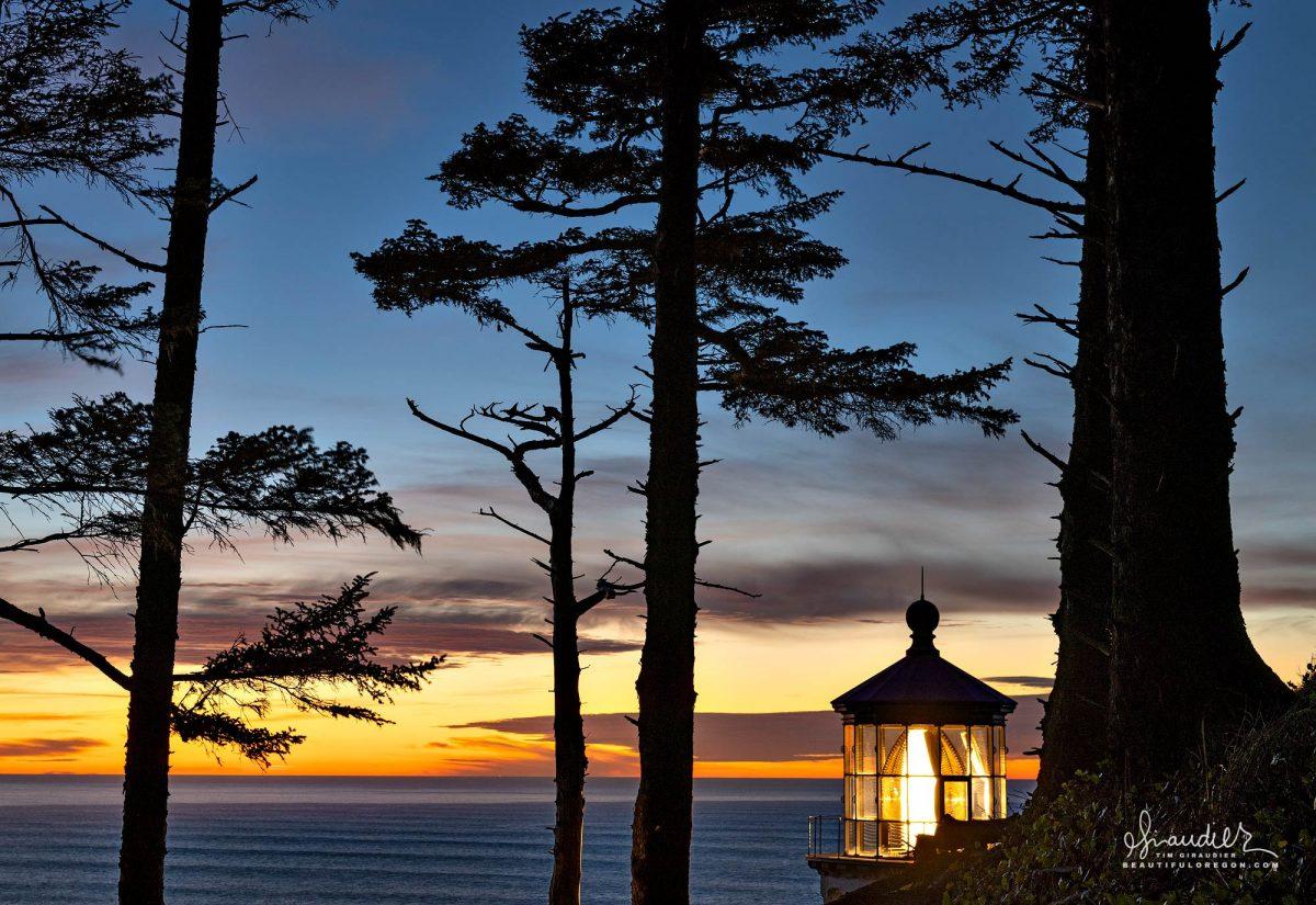 Heceta Lighthouse Sunset and Sitka Spruce. Lane County, Oregon Central Coast