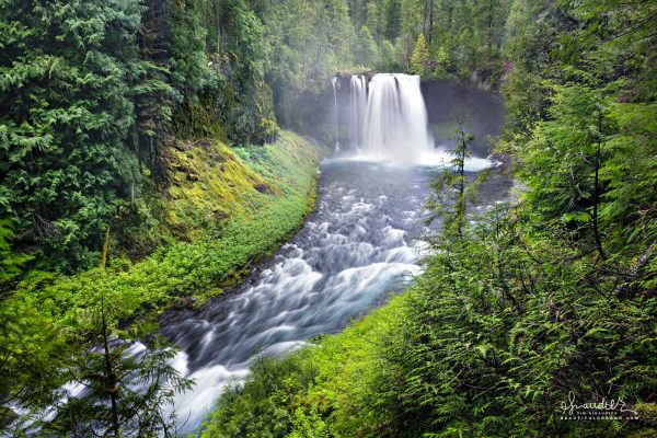 Koosah falls, which means 'sky' in Chinook Jargon is located on the upper McKenzie River. Willamette National Forest, Oregon Cascades.
