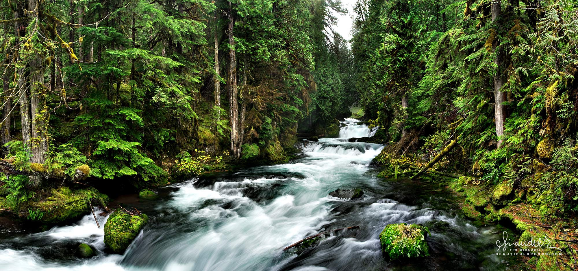 McKenzie River Oregon Cascades