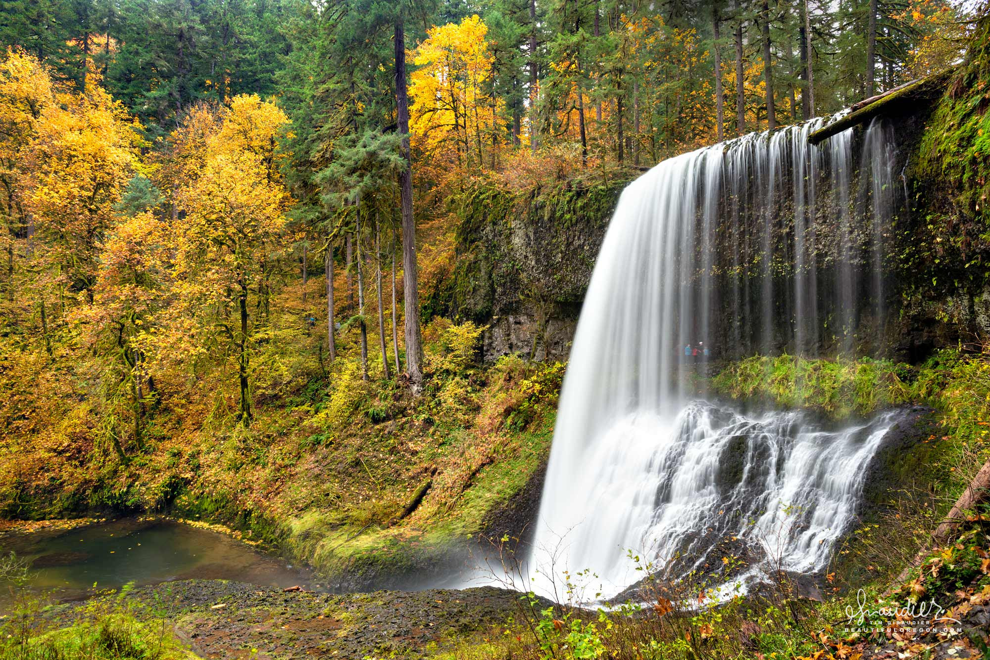 Middle North Falls and North Fork Silver Creek in spectacular fall color. Silver Falls State Park, Oregon West Cascades landscape photography.
