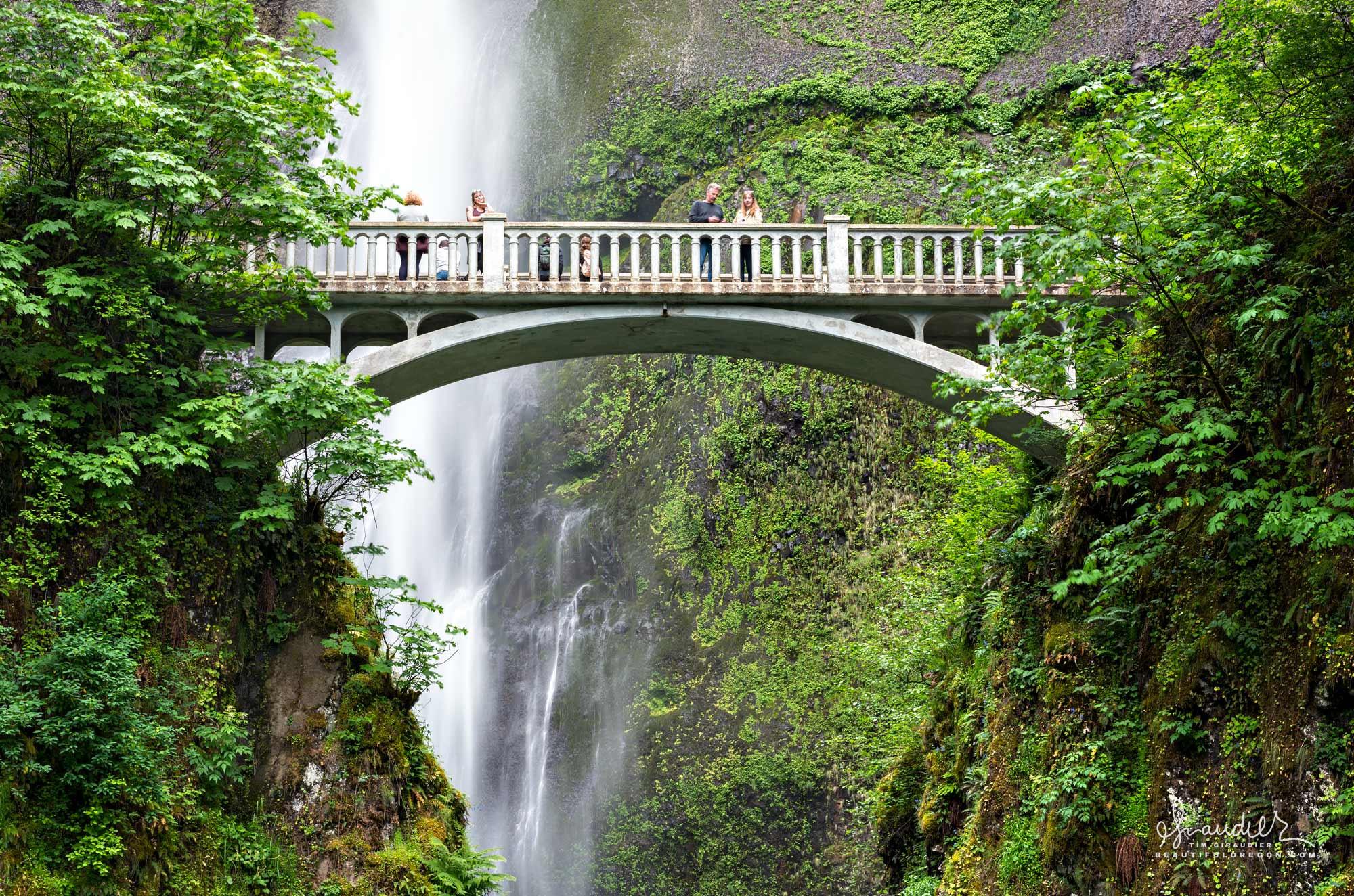 The historic Benson Bridge over Lower Multnomah Falls. Columbia River Gorge, Multnomah County, Oregon landscape photography.