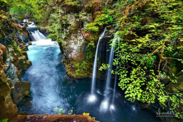 In a narrow along the upper North Umpqua, vine maples and converging cascades come together in the little known, but beautiful Upper Toketee Falls. Umpqua National Forest, Oregon Cascades.