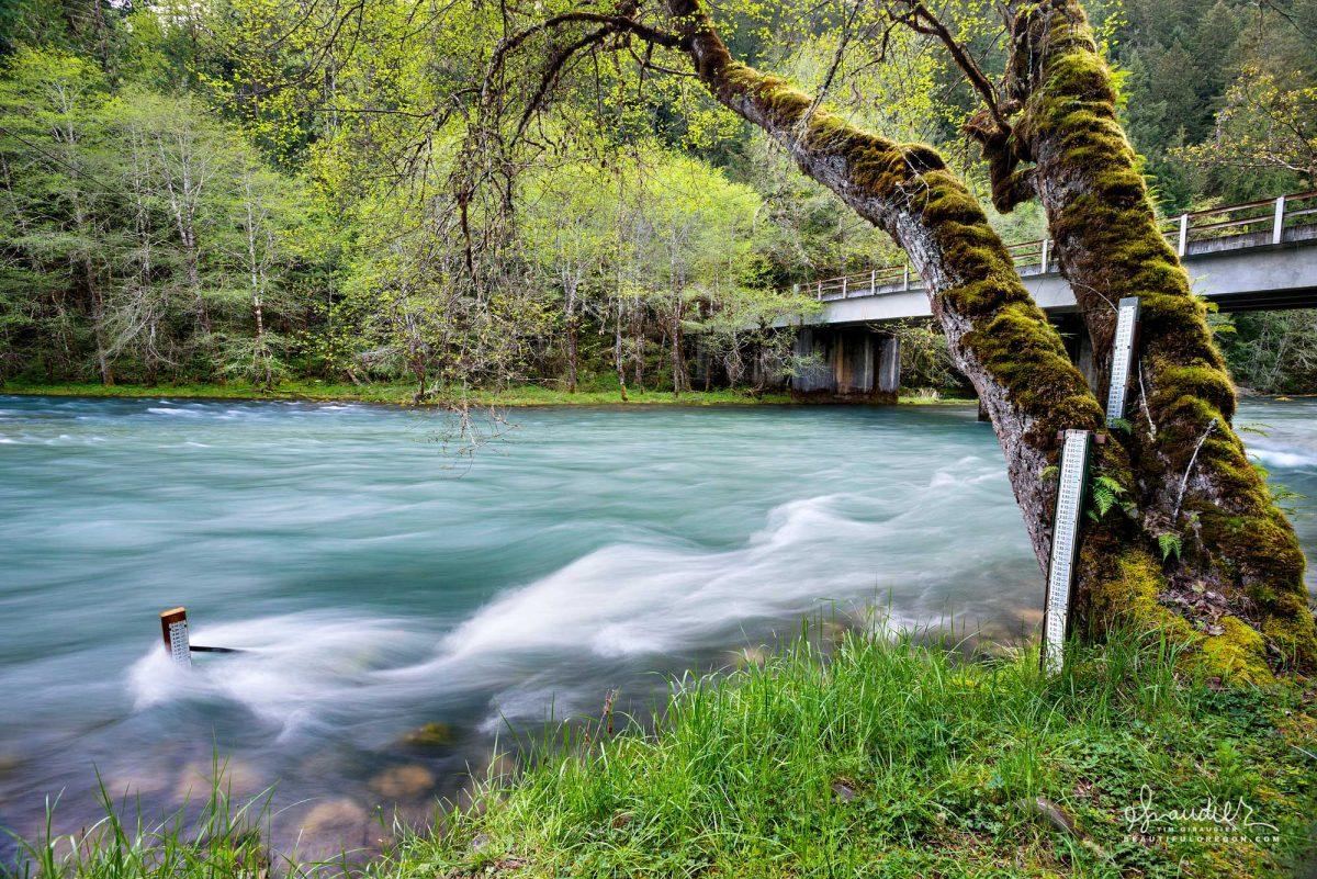 A gauging station along the Middle Fork Willamette River immediately below Hills Creek Dam and Reservoir. Willamette National Forest, Oregon.