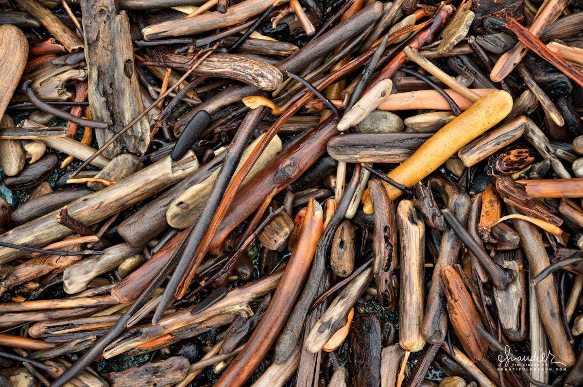 driftwood on beach, Port Orford South Oregon Coast