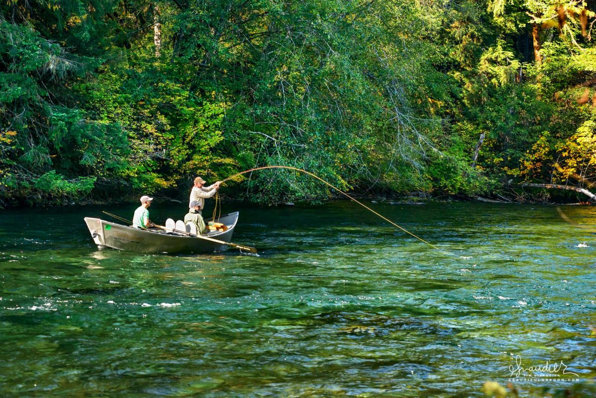 Fly fishing for rainbow trout in McKenzie River. Willamette National Forest, Oregon West Cascades.