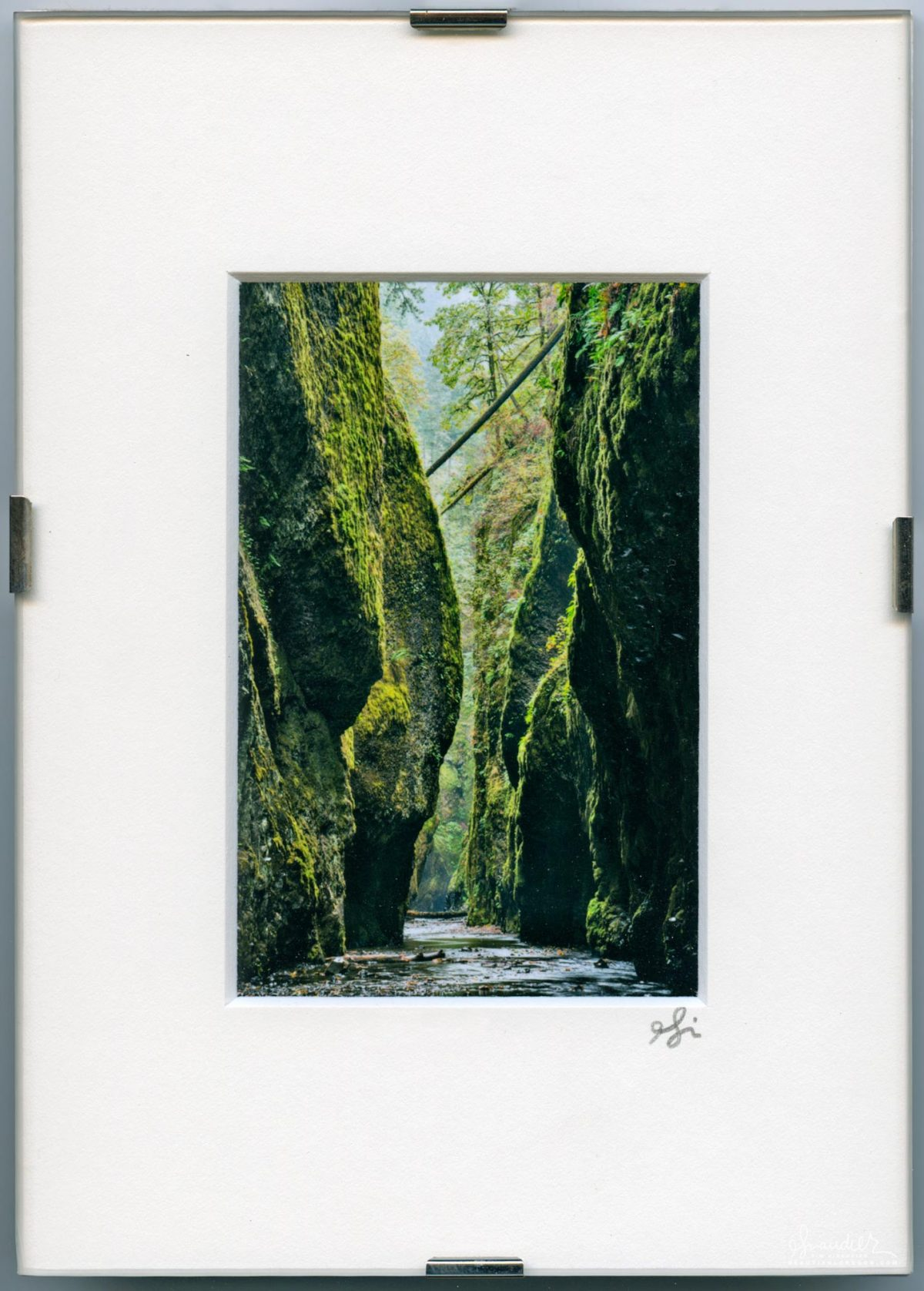 Oneonta Gorge. Mount Hood National Forest, Oregon Cascades.
