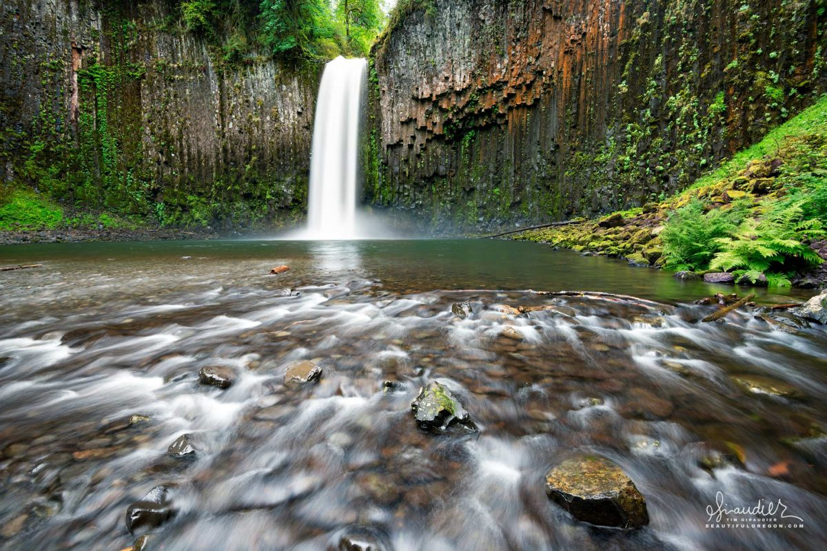 Abiqua Falls and columnar basalt. Santiam State Forest. Marion County, Oregon Cascades. Waterfall photography of Oregon and Pacific Northwest