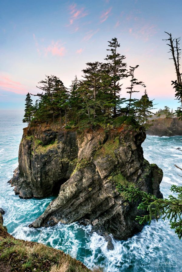 A sea stack capped with Sitka Spruce seems to spiral itself from the sea. Boardman State Park, Curry County, Oregon south coast.