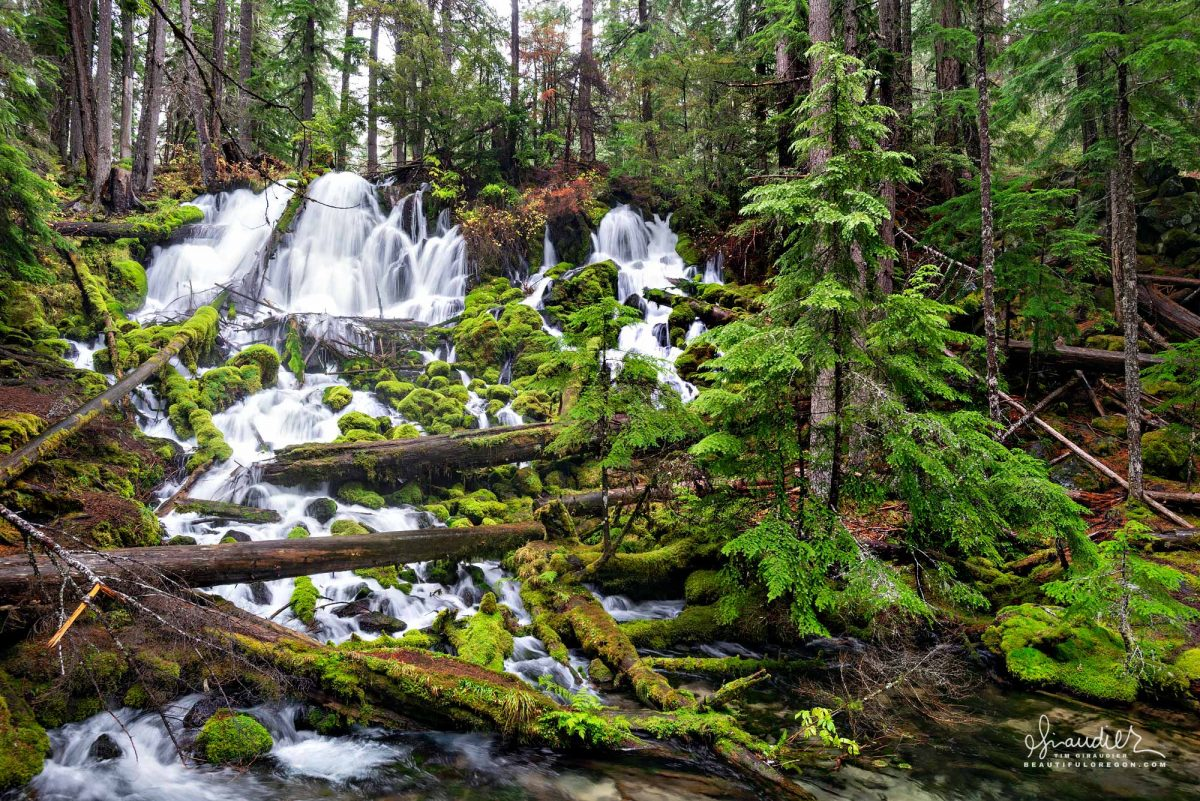 Clearwater Falls and Clearwater Creek, flow cold and crystal clear before reaching the North Umpqua River. Umpqua National Forest, Oregon.