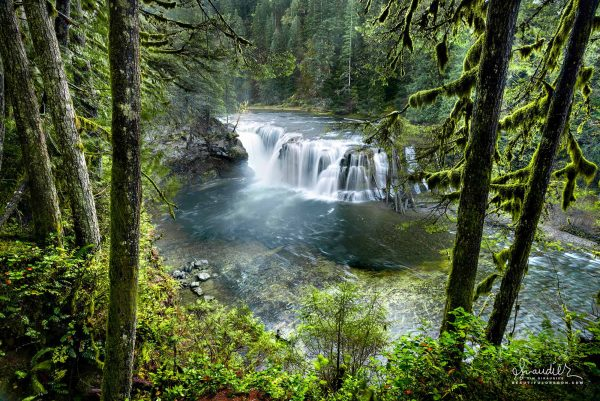 Fed by glaciers on Mount Adams, the impressive Lower Lewis River Falls. Gifford Pinchot National Forest, Washington West Cascades.