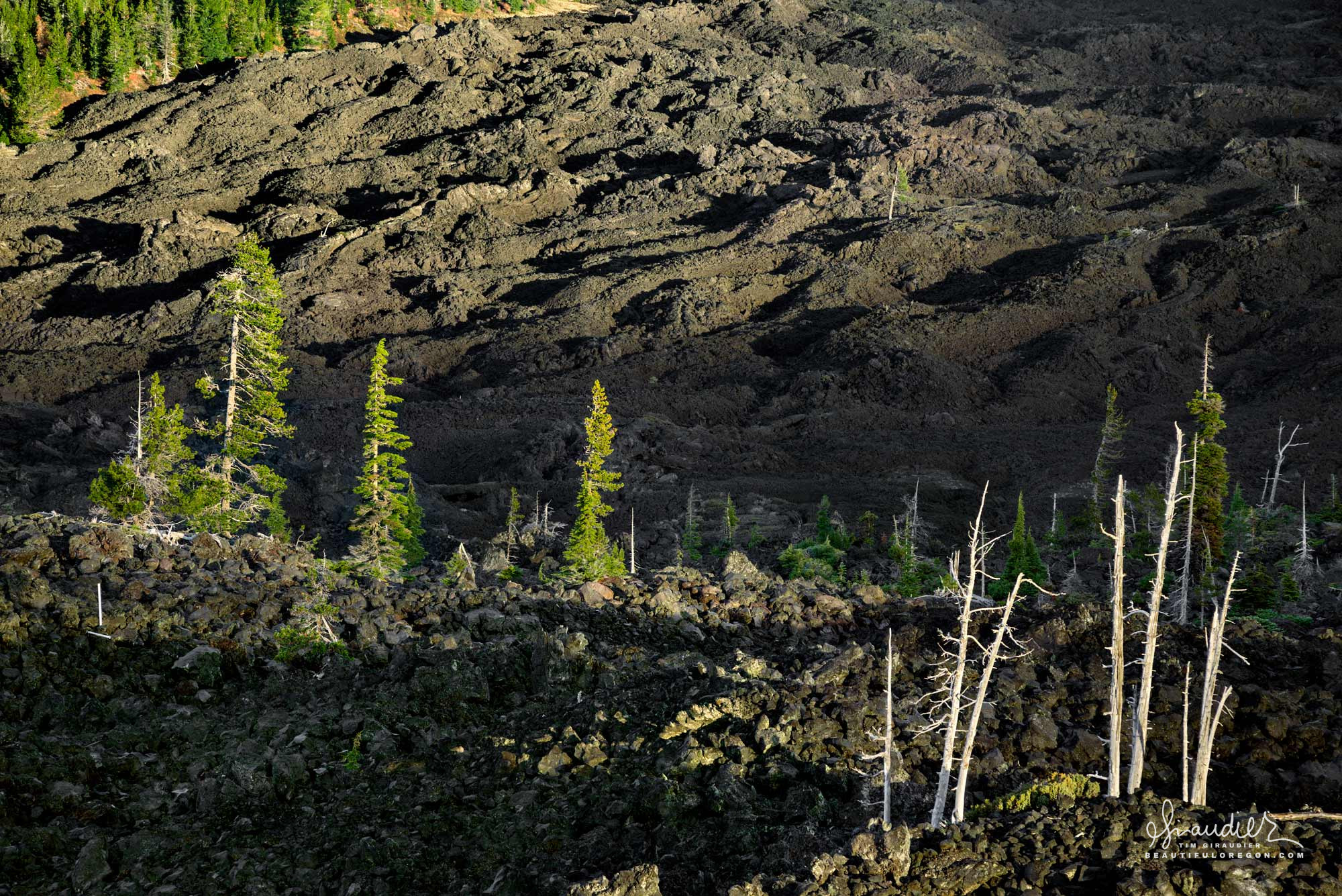 View of Belknap lava flow from Dee Wright Observatory. Old McKenzie Pass, Hwy.242. Deschutes County, Deschtues National Forest. Central Oregon