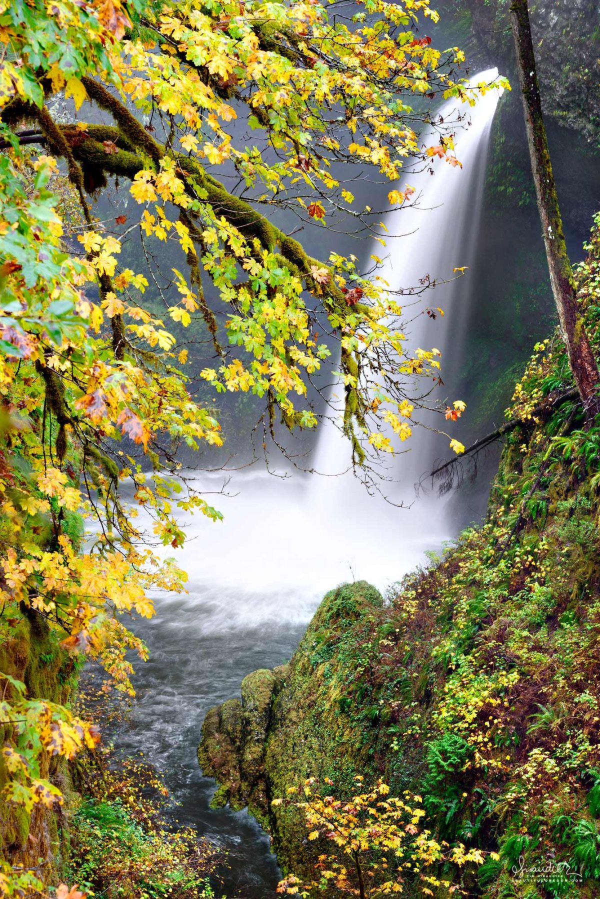 Metlako Falls along Eagle Creek in the Columbia Gorge. Mount Hood National Forest, Hood River County, Oregon Cascades.