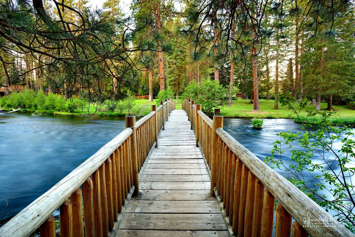 A footbridge spans the Metolius River along the beautiful upper reach near Camp Sherman. Deschutes National Forest, Central Oregon Cascades.