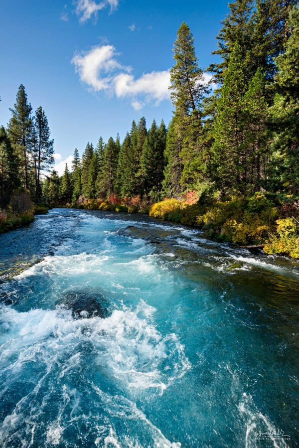 Blue skies and fall foliage along the Metolius River at Wizard Falls. Deschutes National Forest, Central Oregon Cascades landscape photography.