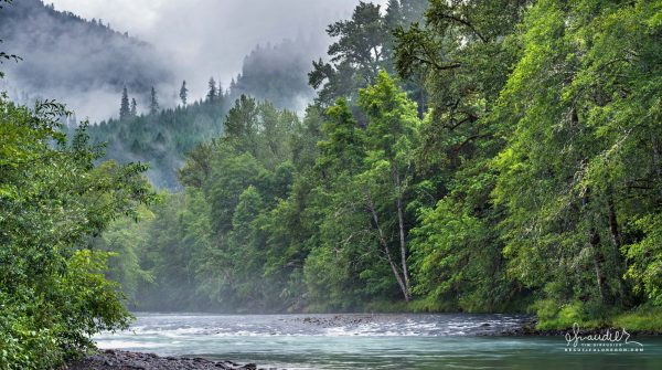 Stormy skies over the Middle Fork Willamette River. Lane County, Oakridge. Willamette National Forest. Oregon West Cascades landscape photography.