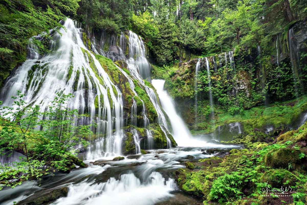 Panther Falls is a spectacular 130′ waterfall consisting of two drops. Gifford Pinchot National Forest, Skamania County, Washington Cascade Mountain.