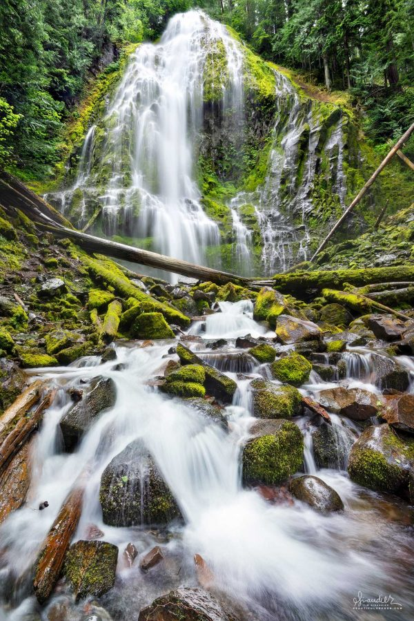 Beautifully framed by forest, Proxy Falls drops 226 feet, before gathering itself once more. Willamette National Forest, Oregon Cascades.