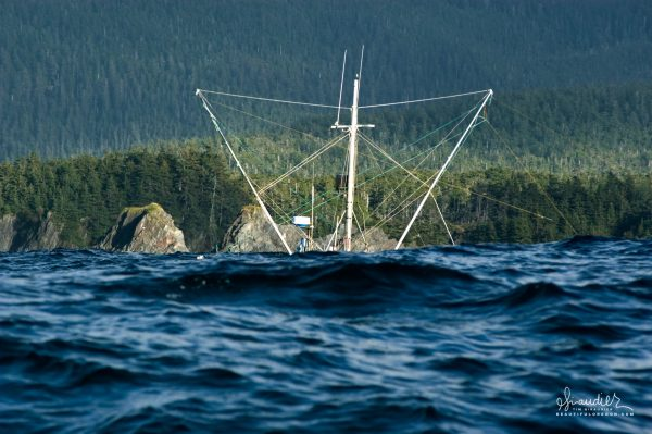 A salmon troller 'submarines' behind a swell as it fishes off the rugged forested shore of Yakobi Island. Gulf of Alaska, Southeast Alaska.