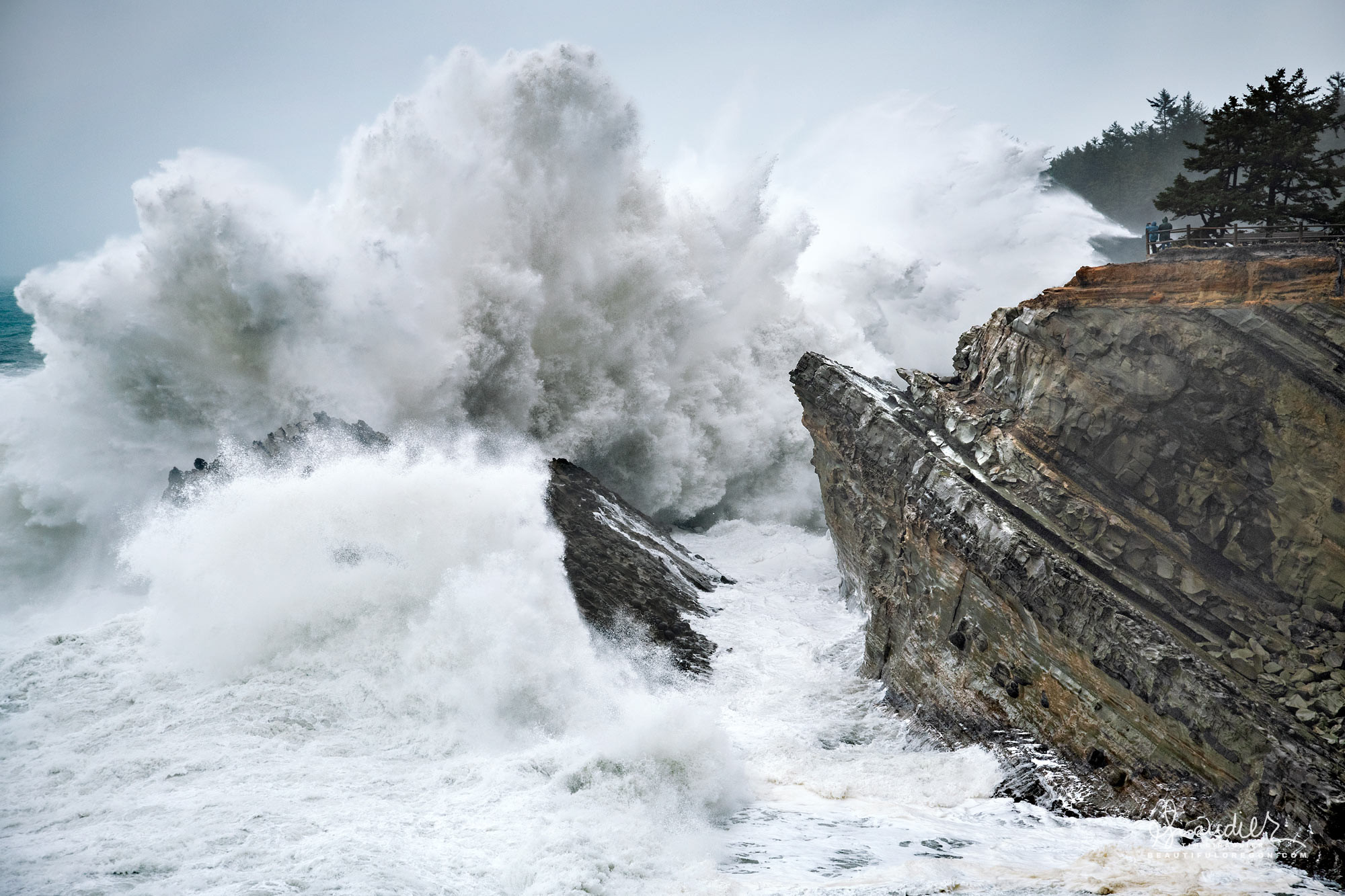 Massive winter storm waves explode on headland rocks at Shore Acres State Park. Cape Arago on Oregon's central coast. Coos County landscape photography.