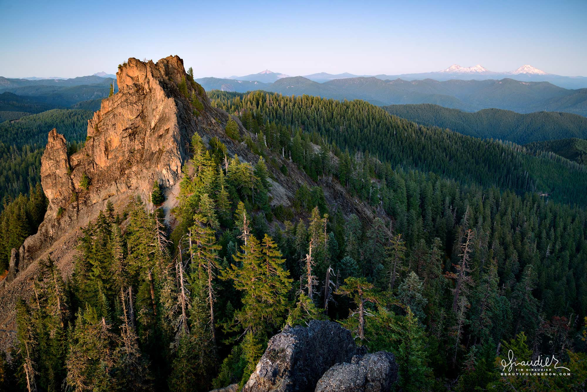 Tidbits Mountain, Willamette National Forest, Linn County, Oregon Cascades. wildflowers, hiking and outdoors recreation fun.