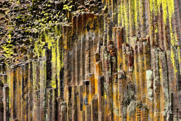 An outstanding example of fine grained columnar basalt and lichen found along the upper section of North Umpqua River.