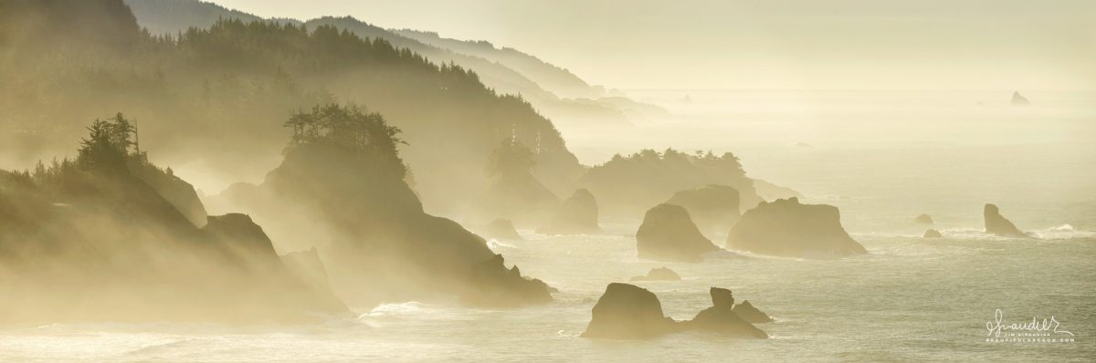 Monochromatic panoramic photography of Boardman State Park and the South Oregon Coast.