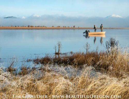 Davis Lake, a question of Native Rainbow Trout and the introduction of Large Mouth Bass.