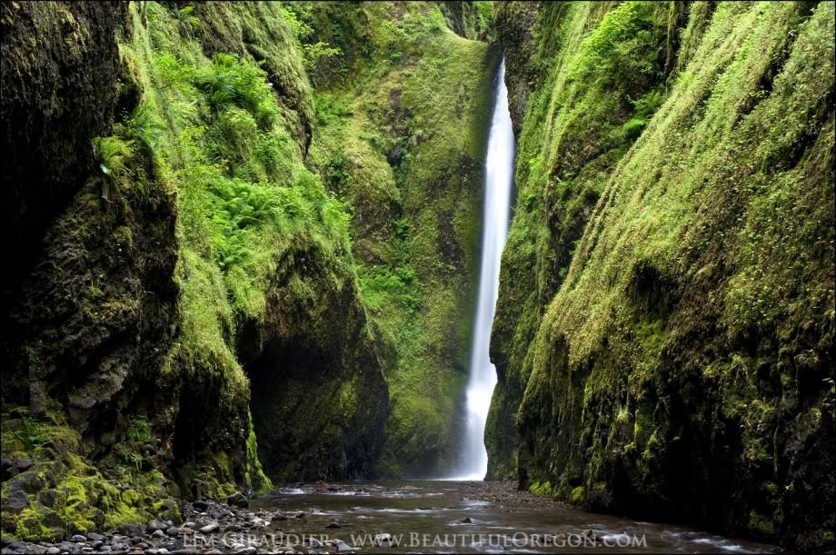 Oneonta Gorge Waterfall Columbia Gorge Oregon 72110 7113