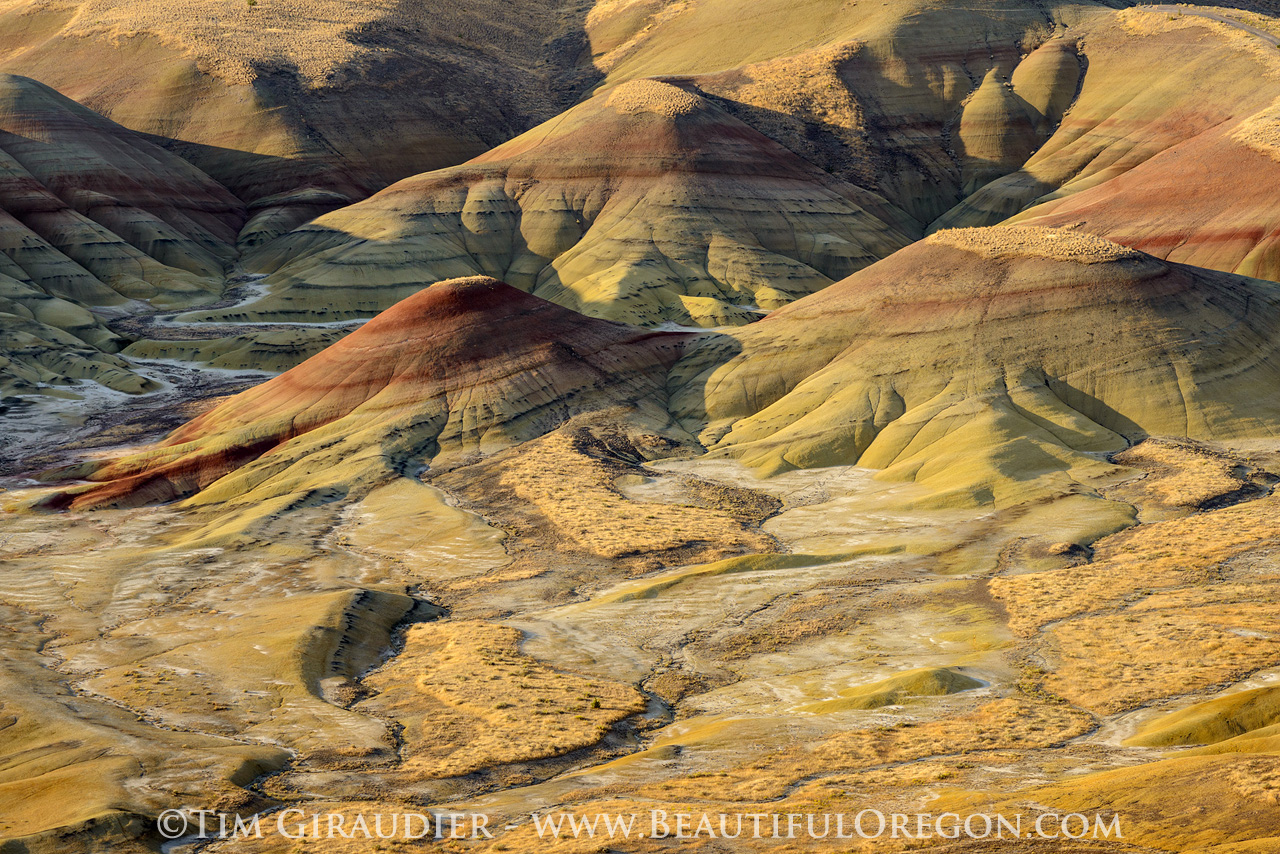 painted hills john day fossil beds national monument eastern painted hills john day fossil beds national monument wheeler county oregon yellow