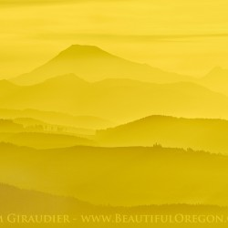South Sister, Brokentop, Oregon Cascades, Lane County, sunrise, Oregon, yellow
