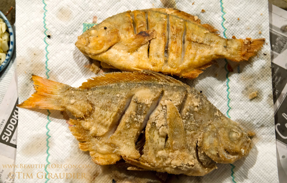 Fried Yellow Perch