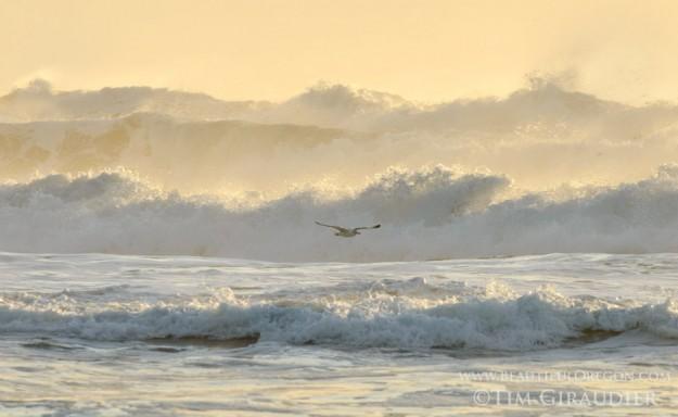 waves-sunset-oregon-coast-11415-4708